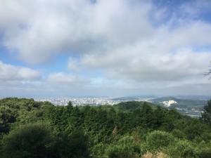 龍ノ口グリーンシャワーの森