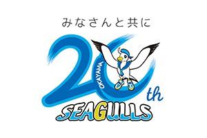 seagulls300*200
